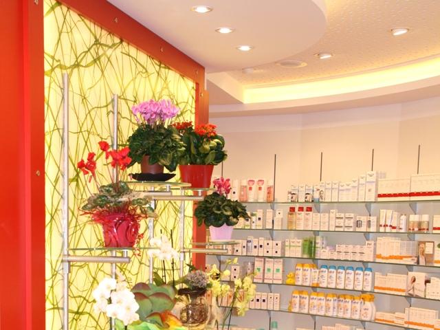 Auer Stadt-Apotheke – Plexiglaswand mit echtem Weidengras